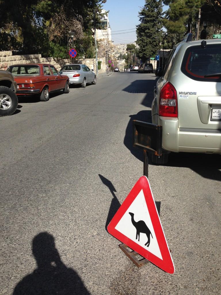 Camel Parking?